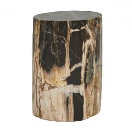 Taburete de madera petrificada