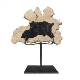Stand madera fósil