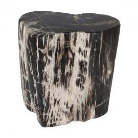 Mesa madera fosilizada