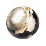 Bola madera fósil