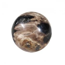 Bola madera petrificada