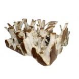 Muebles de raíces y troncos
